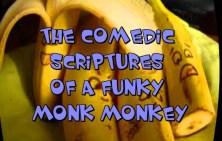 Monk Monkey Final