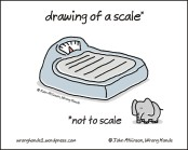 drawing of a scale