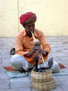 450px-Charmeur_de_serpents_à_Jaipur_(2)