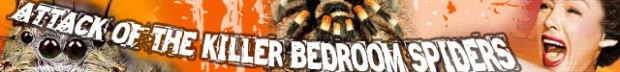 attack of spiders banner
