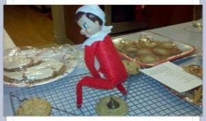 LAP Elf