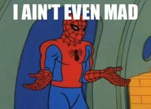 Spider-Meme (19)